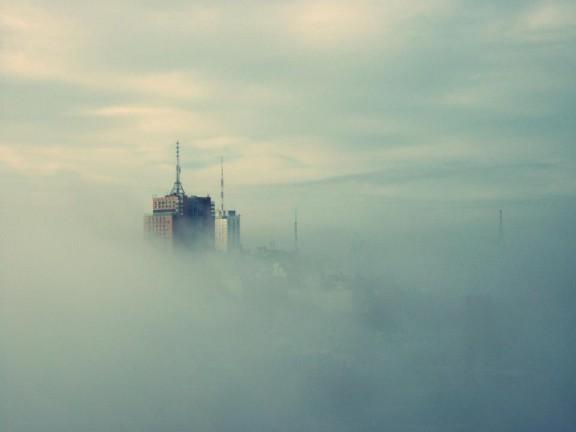 Niebla intendencia